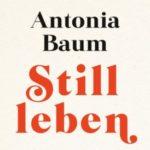 """Gruppenlogo von lit:chat zu dem Buch: """"Stillleben"""" von Antonia Baum"""